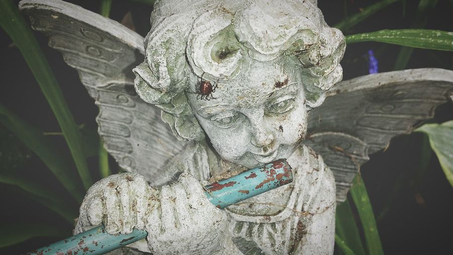 High Angle View Of Old Angel Statue In Garden