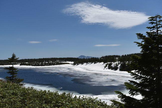 残氷の 八幡沼 Blue Beauty In Nature Sky No People Scenics Mountain Tree Plant Landscape Nature Lake View Snowlake