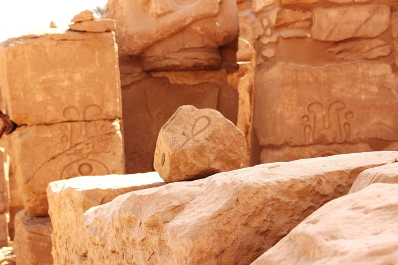 Life is everywhere Close-up Ancient Ruins Ruins Of A Past Outdoors Sunny Day No People Beauty In Ordinary Things Memories Life Stones Travel Photography Egypt Sand Everywhere Sign