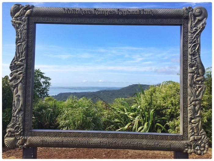 How's that for a View Nihotupo Frame Within A Frame Exploring New Zealand Natural Showcase March Malephotographerofthemonth Summer 2016 Flowers, Nature And Beauty Learn & Shoot: Simplicity Native Bush The Purist (no Edit, No Filter) Reflecting This Is Perfection Peaceful View