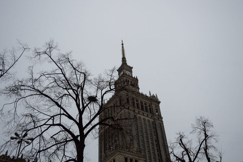 Poland Warsaw Europe Sky Tree Low Angle View Building Exterior Built Structure Architecture Bare Tree Building Religion Belief Nature Spirituality Tower Plant Place Of Worship Clear Sky Branch History The Past No People Spire  Outdoors
