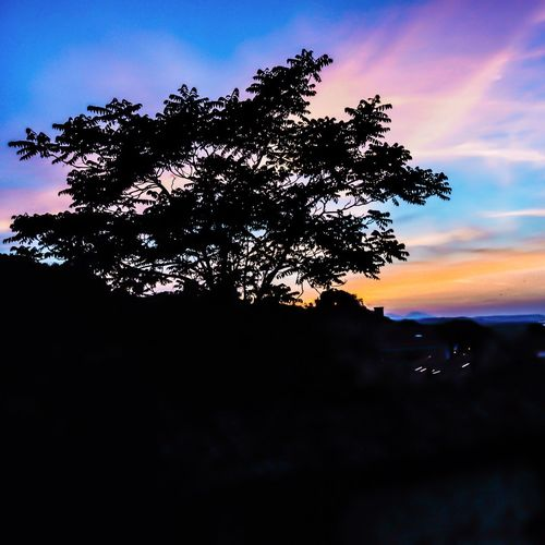 Shades Sunset Sunset_collection Sunset Silhouettes Landscape Landscape_photography Landscape_Collection Sky Sky_collection Silhouette