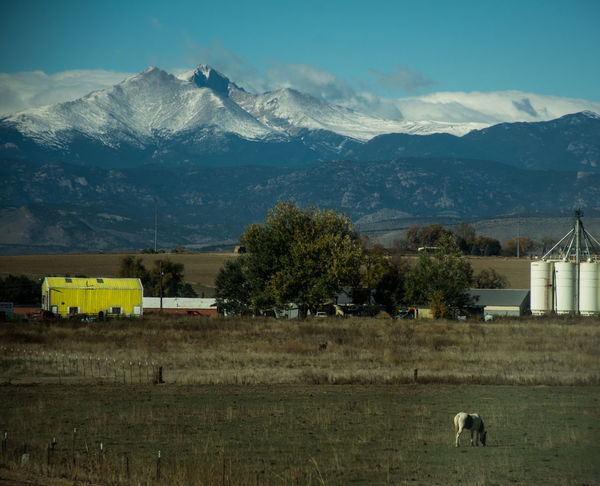 Biggerphotography Colorful Colorado Horse Landscape Longs Peak Mountain Mountain Range Snow Tranquil Scene