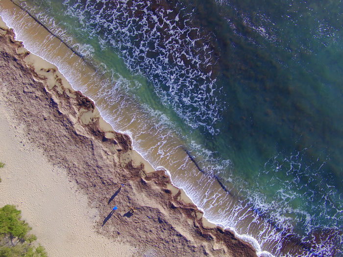 Posidonia Seaweed On The Beach After The Storm Costa Dorada Beach-Tarragona Drone  Aerial Photography Beach Beauty In Nature Close-up Day Motion Nature No People Outdoors Photography With A Drone Sea Vertical Photography Water Wave