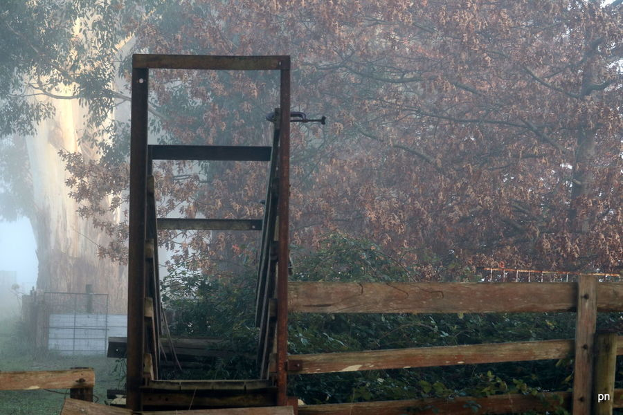 Cattle Yard Close-up Day Foggy Morning Frame Loading Dock Nature No People Open Outdoors Part Of Sky Winter Wood - Material