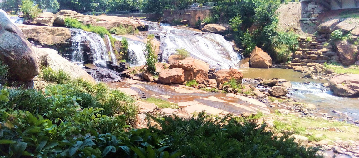 Few things are more relaxing than listening to the sound of water running over rocks Greenville, SC Reedy River Relaxing Scenic Tranquil Beauty In Nature Day Flowing River Nature No People Outdoors Rock - Object Rocks Serene Shallow Water Sound Of Water Take A Break Tree Water Over Rocks Waterfall
