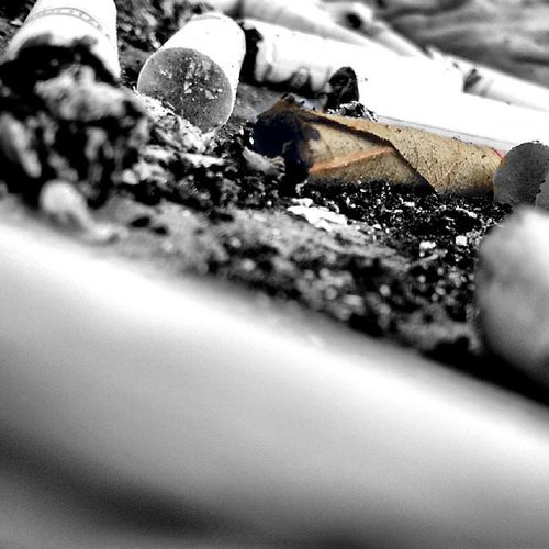 Beedi Cigarette  Ash Smoke Sutta Bhaijaanwouldapprove Bhaijaanwouldntmindthisbeingpostedoninstagram Smokingkills