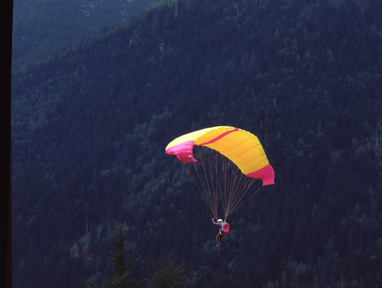 real people, one person, tree, parachute, leisure activity, extreme sports, lifestyles, day, men, adventure, mid-air, outdoors, yellow, nature, flying, paragliding, mountain, people
