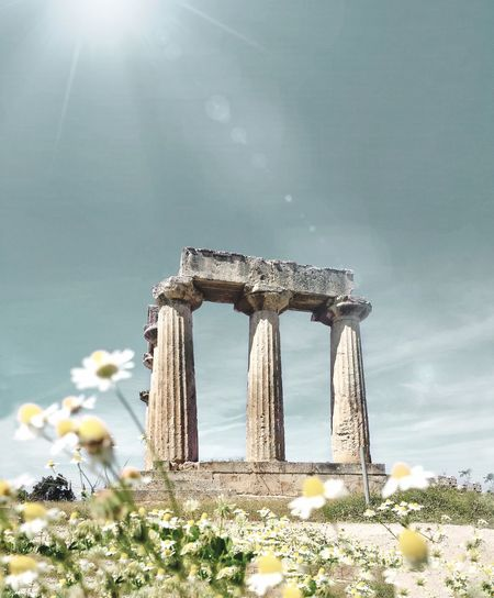 Colour Of Life Colors Colorful Gettyimages Gettyimagesgallery Getty X EyeEm Flowers GREECE ♥♥