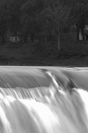 Blurred Motion Tree Nature Flowing Water River Waterfall LongTime  Speed No People Analogue Sound