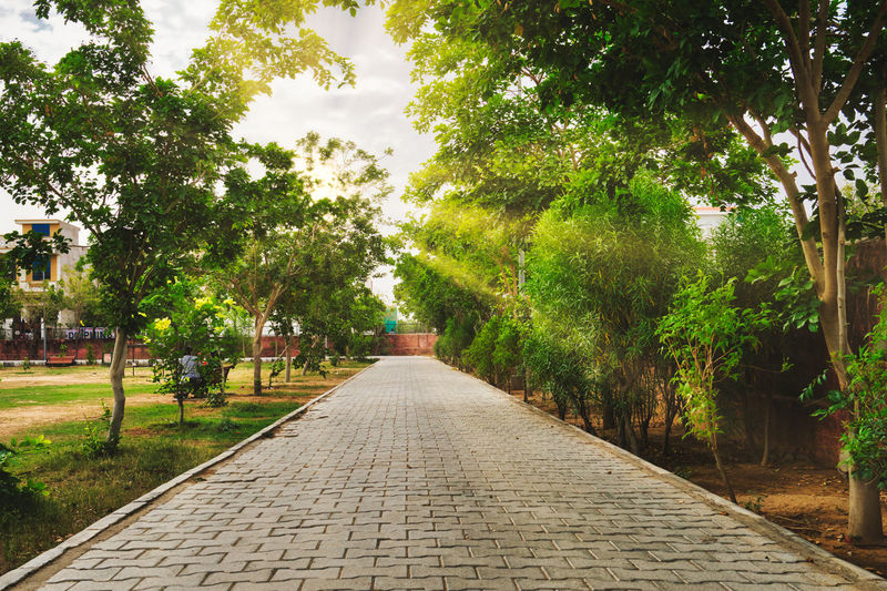 View of pathway