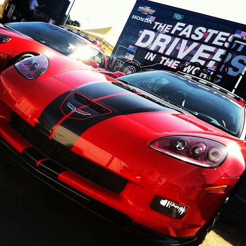 Corvette For Life Bloods  chevypowerfuckford