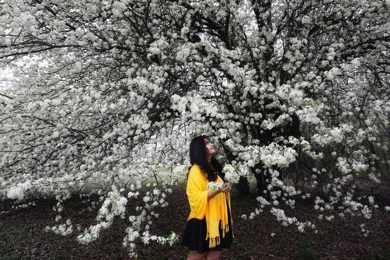 Tree One Person Flower Real People Nature Long Hair Outdoors Beauty In Nature People Young Women Leisure Activity Young Adult Full Length Adults Only Day Yellow Adult Freshness