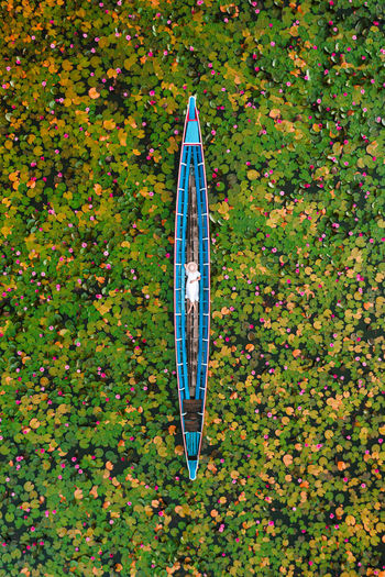 High angle view of umbrella on field