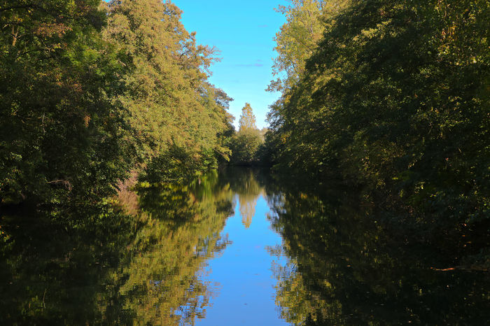 Ruhr Beauty In Nature Day Diminishing Perspective Forest Growth Nature No People Non-urban Scene Outdoors Plant Reflection River Scenics - Nature Sky Tranquil Scene Tranquility Tree Water Waterfront