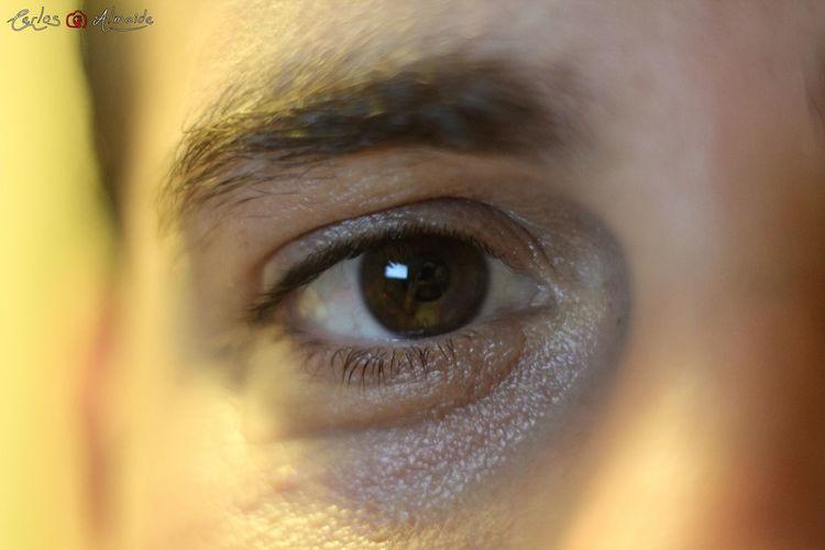 "Title: ""Eye 01"" Place: Les Pleiades, Serris, France Date: 22-10-2013 - 17h33 Camera: Canon EOS 60D Lens: Minolta MD 50mm f/2 Software: Raw photo, no edit. All rights reserved © Carlos 'Ammok' Almeida Ammok Close-up Eyeball Eyelash Eyesight Human Body Part Human Eye Olho Portrait Real People"