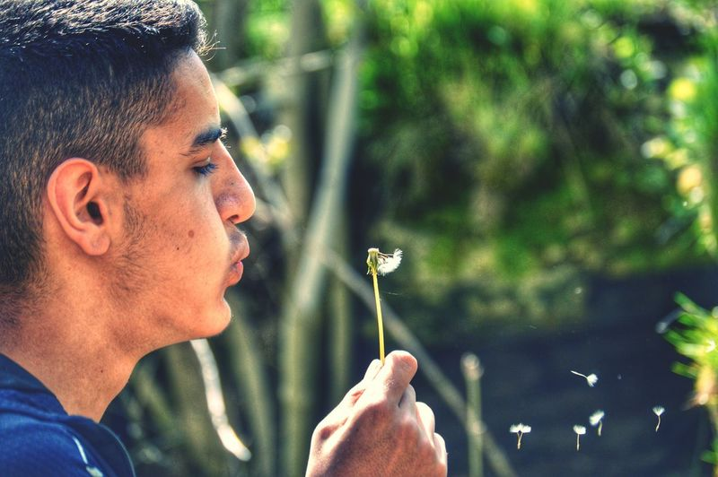 Close-up of man blowing dandelion against tree