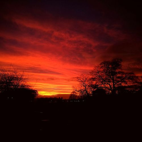 Sky over Edinburgh Sunset Beauty In Nature Sky Red Outdoors Silhouette Tree Nature Urban Lifestyle Edinburgh Scotland