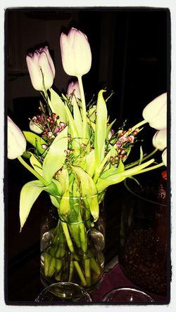 bukett Flowers