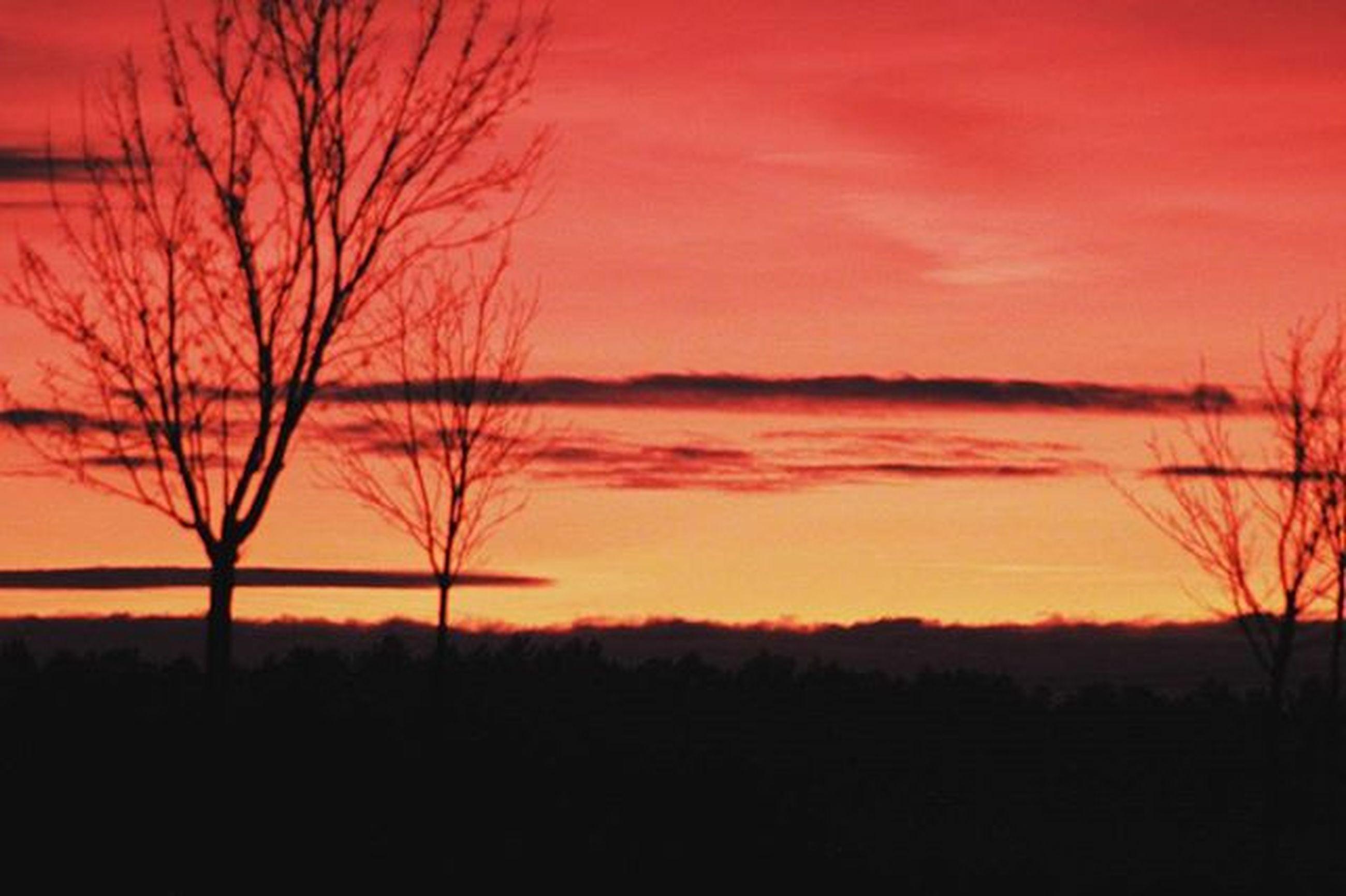 sunset, silhouette, bare tree, tranquil scene, tranquility, scenics, orange color, beauty in nature, sky, tree, landscape, idyllic, nature, dramatic sky, dark, cloud - sky, majestic, dusk, non-urban scene, branch
