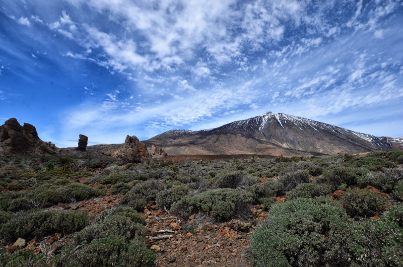 Scenics - Nature Beauty In Nature Sky Mountain Tranquil Scene Cloud - Sky Environment Tranquility Landscape Non-urban Scene Plant Nature No People Idyllic Land Day Remote Rock Tree Geology Outdoors Formation Mountain Peak Volcano Teide National Park
