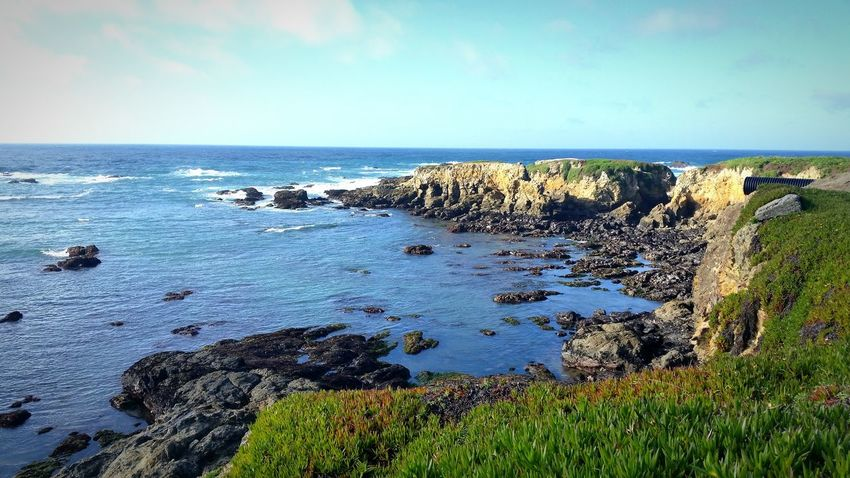 Life Is A Beach North Coast! Fortbragg Westcoastisthebestcoast👌 Californialove Landscape_photography Eyem Nature Lover Enjoying The View Ocean_Collection ~~ Oceanlife Nature_collection Pacific Northwest  Coastline
