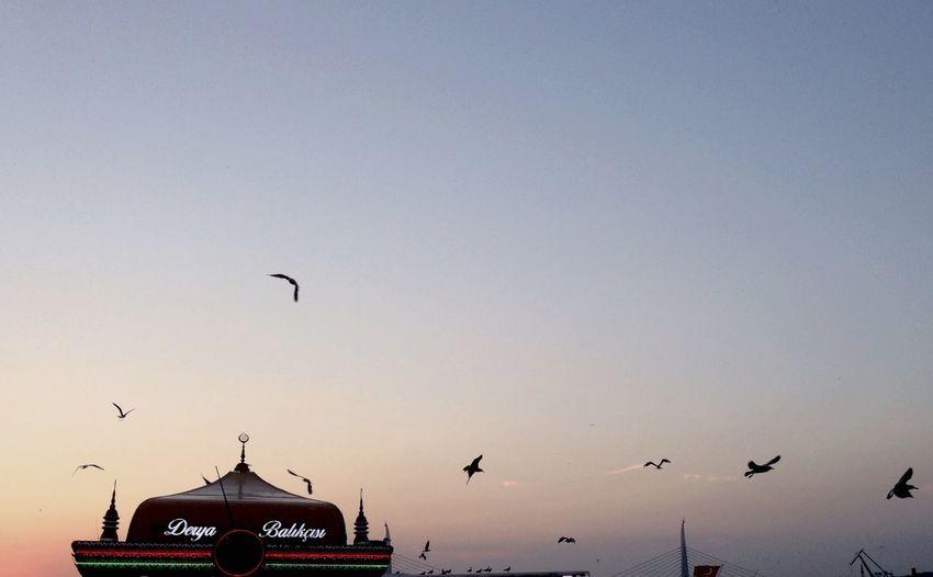 Rutina también es querer vivir todos los dias algo extraordinario Istanbul Turkey First Eyeem Photo Madrid