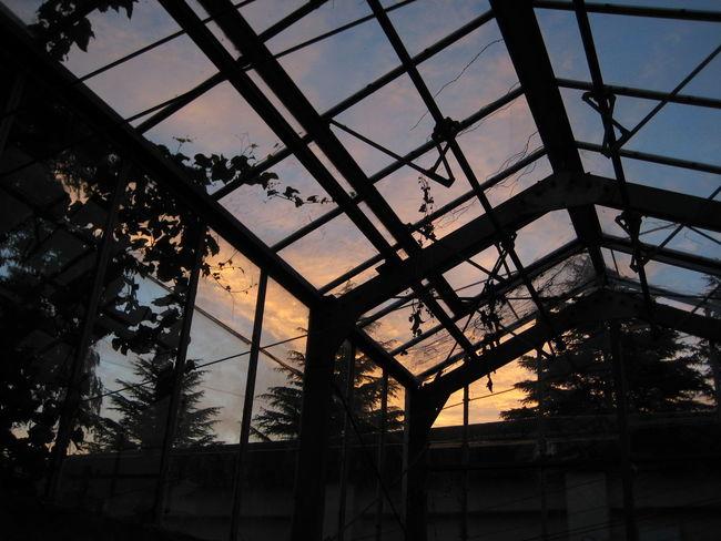 Iwate Iwate University Japan Morioka Sunrise Tohoku 夜明け 岩手 岩手大学 朝焼け 東北