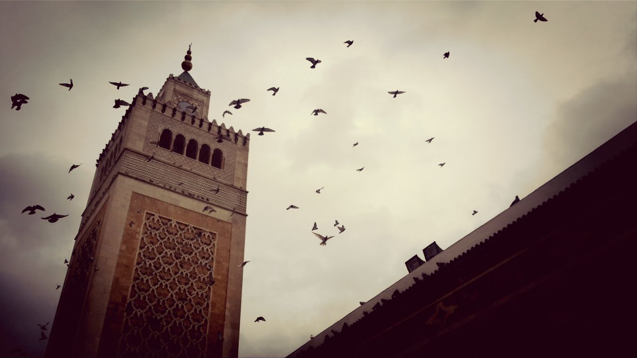 Low angle view of al-zaytuna mosque against birds flying sky