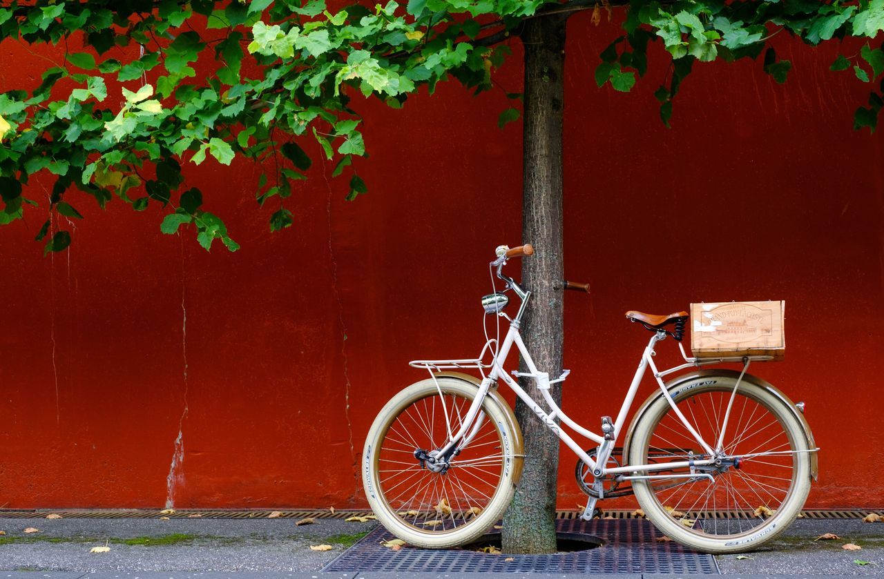 Bicycle With Crate Leaning On Tree Against Red Wall