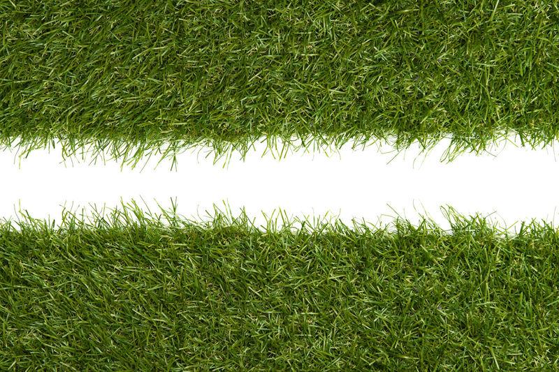 Full frame shot of grass on field against sky