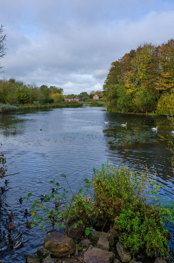 Looking across a lake. Autumn Cloudy Perton Trees Wolverhampton Autumnal Beauty In Nature Cloud - Sky Day Growth Lake Nature No People Outdoors Outdoors Photograpghy  Outside Scenics Sky The Fall Tranquil Scene Tranquility Tree Water