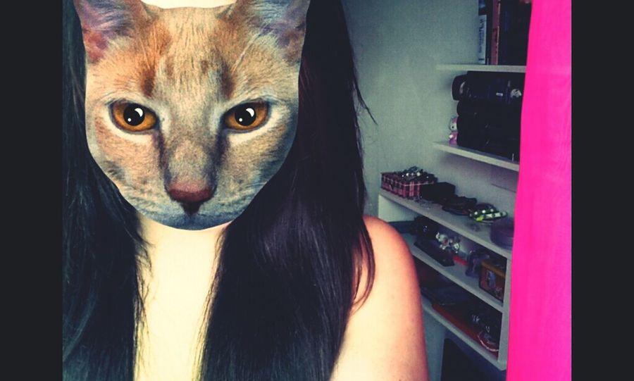 Catwang♥ Me CatWangNiggah! Funny Faces #cat