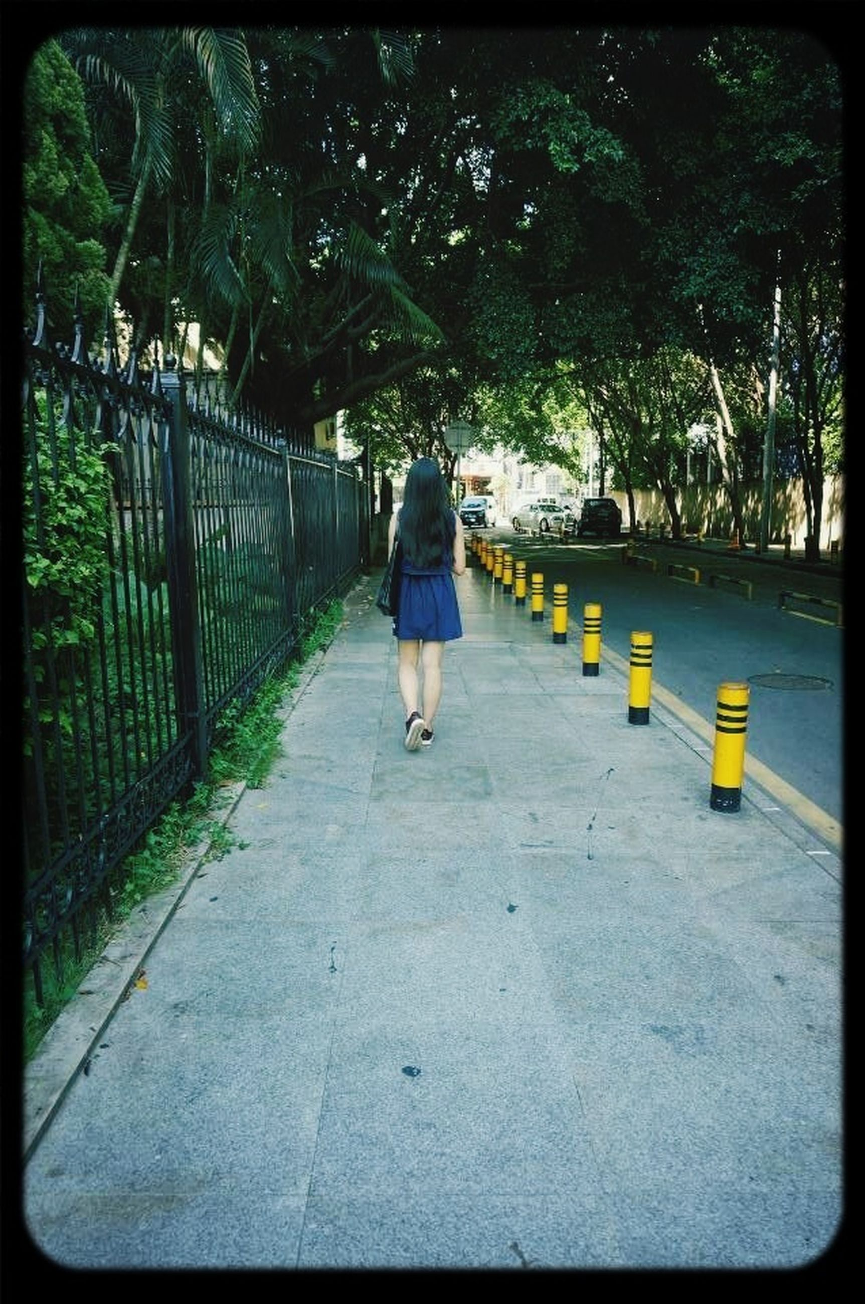 full length, rear view, walking, lifestyles, the way forward, casual clothing, leisure activity, tree, men, person, transfer print, on the move, diminishing perspective, auto post production filter, childhood, footpath, day, standing