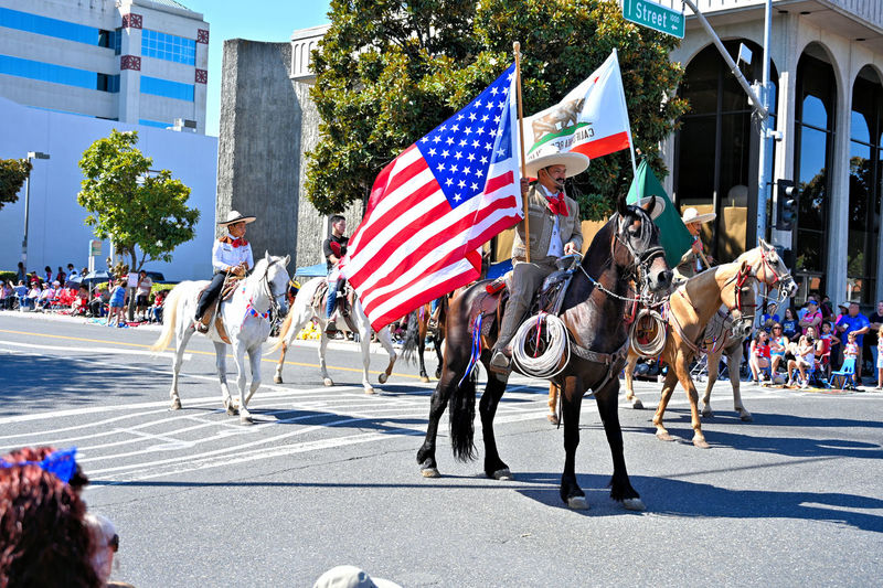 The Farmer Insurance uses their horses for the parade during the Independence day celebration at downtown Modesto, California Crowd Group Of People City Flag Patriotism Large Group Of People Architecture Real People Street Building Exterior Day Built Structure Men Sunlight Parade Mammal Nature Outdoors Spectator 4th Of July