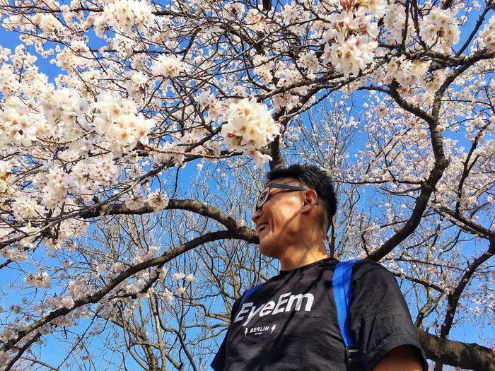 EyeEm Tokyo MeetUp 12 Cherry Blossom Cherry Blossoms Sakura Sakura2016