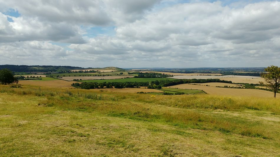 View from Whipsnade Zoo Landscape Grass Dark Green Light Green Shade Of Green Bird Tree Distance Cloud - Sky Water Scenics Outdoors Day Beauty In Nature No People Nature Sky