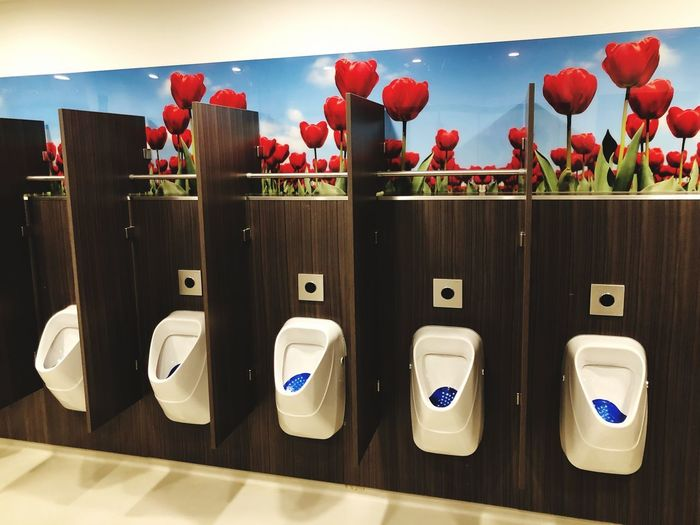 Urinal Wc Toilet In A Row Indoors  Red Hygiene Urinal No People Freshness