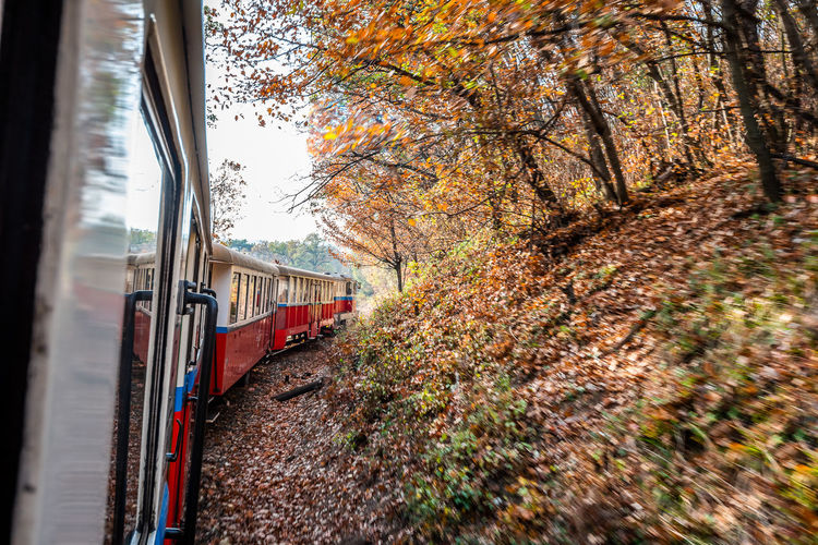 Nature Train Trees Tree Autumn Red Day Outdoors Forest Track Transportation Railway Public Transportation Plant Rail Road Railroad Track No People Rail Transportation Land Vehicle Mode Of Transportation Train - Vehicle Window Travel Passenger Train Built Structure