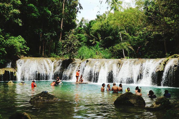 People swimming in pool against trees