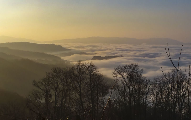 Above Clouds Above Fog Beauty In Nature Dawn Day Fog Landscape Mountain Mountain Range Nature No People Outdoors Scenics Silhouette Sky Sunset Tranquil Scene Tranquility Tree Flying High Perspectives On Nature