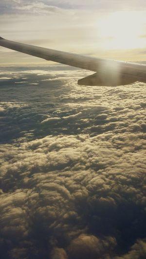 Capturing Freedom Hello World Aeroplane Enjoying Life
