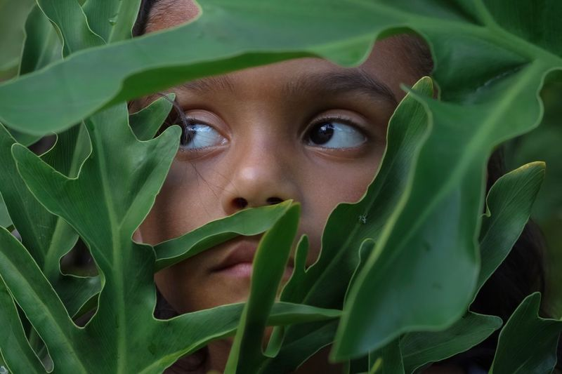 Jungle Forest Eyes Hiding Green Color Child Childhood Close-up Plant Part Portrait Leaf Plant Growth Real People Outdoors Innocence Nature Looking Human Face Cute 2018 In One Photograph My Best Photo