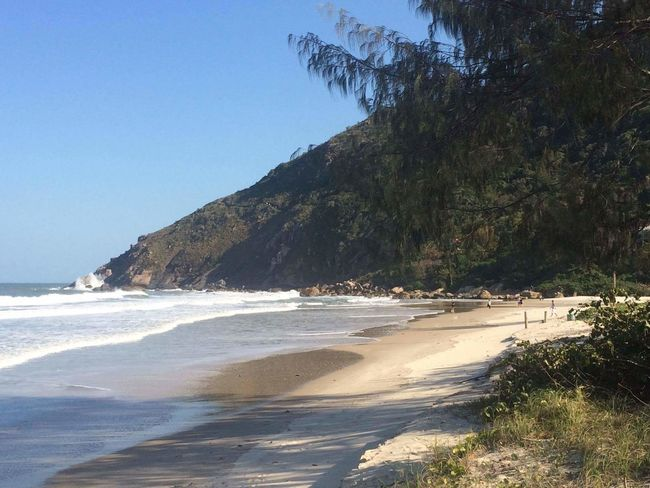 Sand Water Nature Tree Tranquility Wave Beach Sea Mountains Brazil Florianópolis - SC Solidao Beach