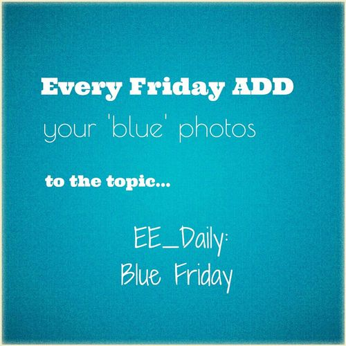 Every Fridayy ADD your 'blue' photos to the topic... EE_Daily: Blue Friday Blue Blue Friday Ee_daily EE_Daily: Blue Friday