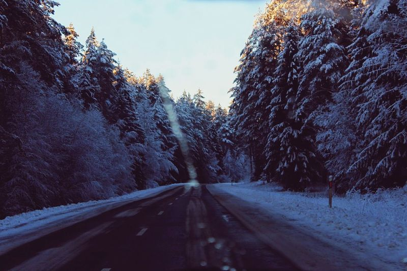 Winter Winter Road Windshield Nature Snow Cold Days Roadtrip The Way Forward Forest
