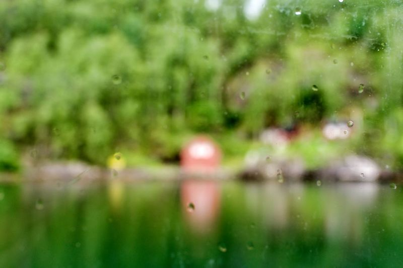 Norway, Haugesund: Day Daylight Daytime Outdoors Water Out Of Focus Reflection Cabin Color Green Nobody No One No People Nature Green Color Selective Focus Plant Lake Growth Close-up Beauty In Nature Environment Tree Glass - Material