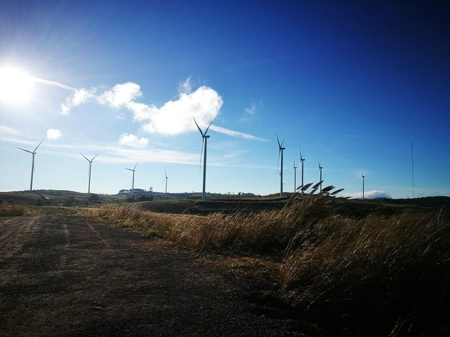 Fuel And Power Generation Wind Power Wind Turbine Alternative Energy Electricity  Environmental Conservation Renewable Energy Technology Power Supply