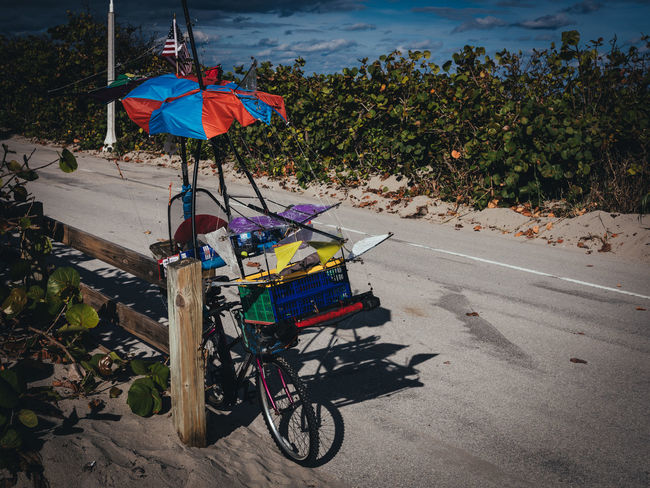 One-Of-A-Kind GFX50s Nature Bicycle Florida Fujifilm_xseries Mode Of Transport One Of A Kind  Outdoors Photographyisthemuse Unique