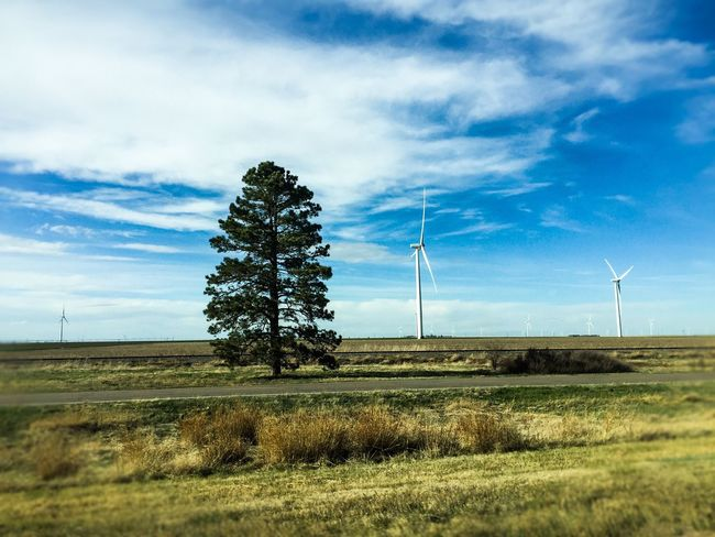 Alternative forms of Energy Wind Turbine Showcase April Sun Road Trip Sky Nature Highways And Byways Spring Sky And Clouds Tree